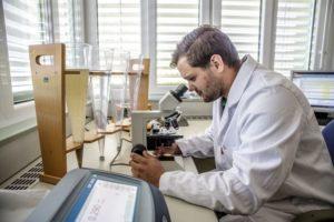 Klärschlamm-Untersuchung im Mikroskop